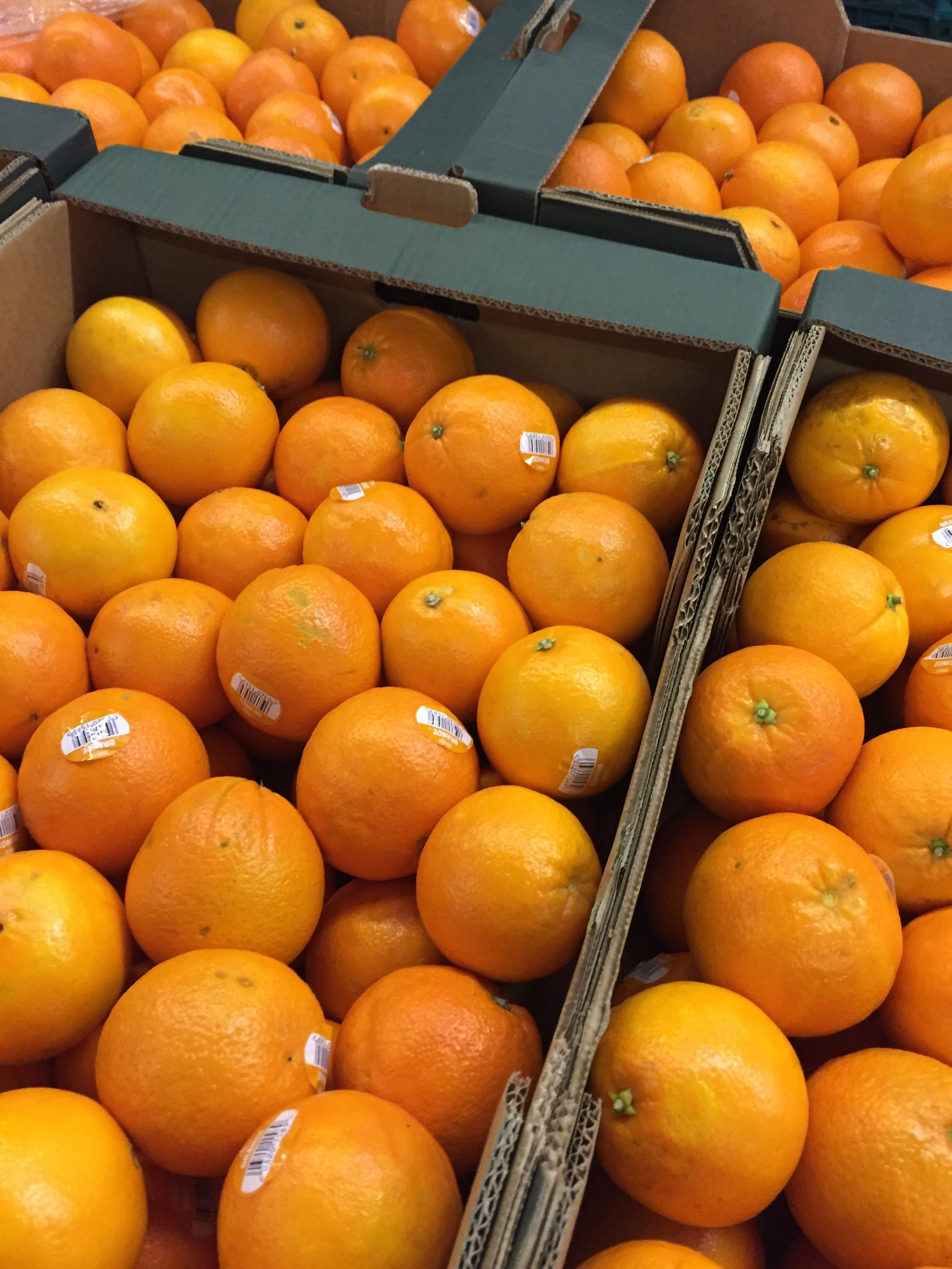 Surplus oranges from AMT fruit