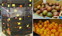 Food to FareShare from Mack