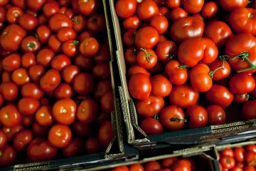 Surplus tomatoes from Thanet Earth
