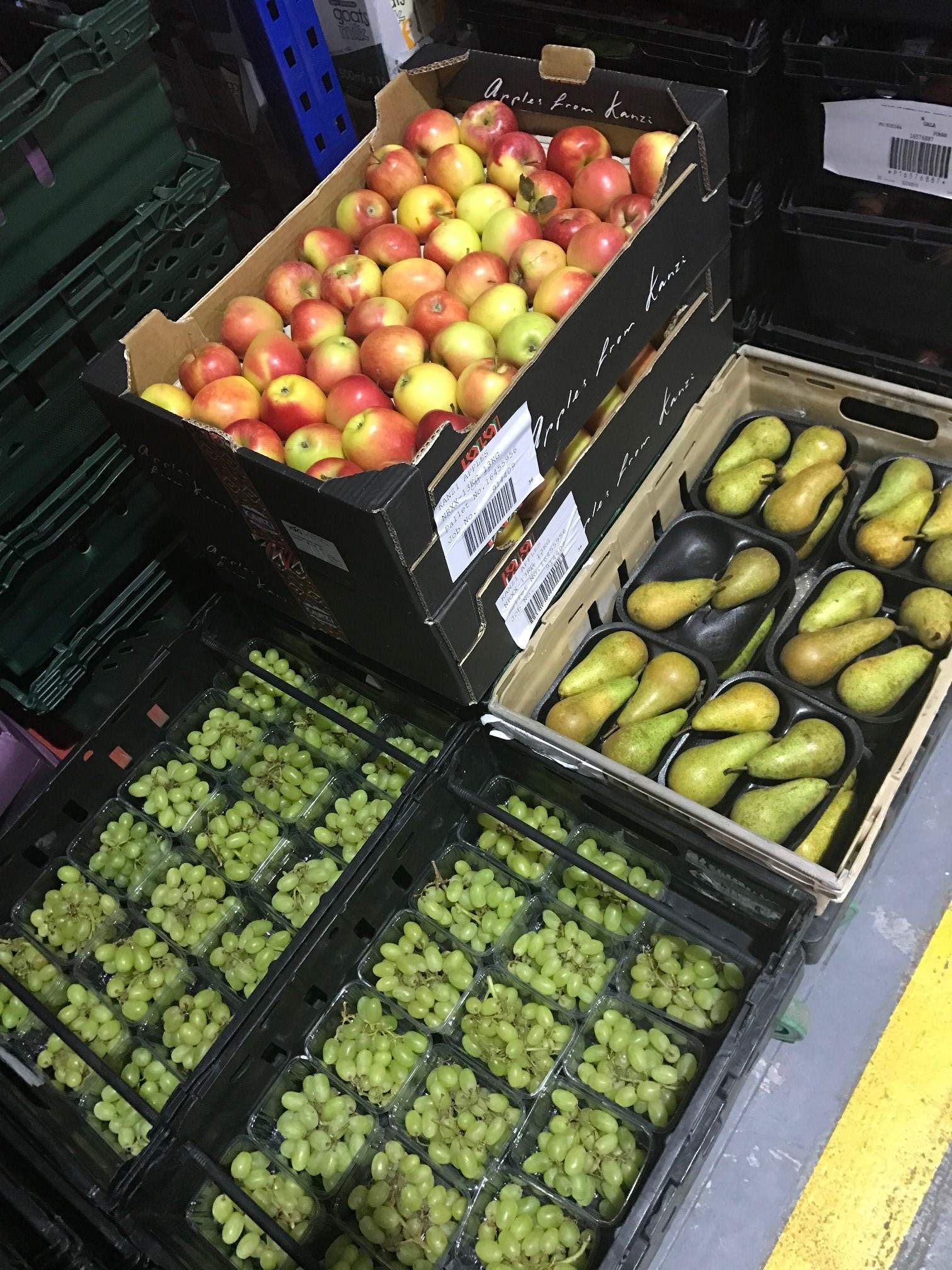 IPL fruit at FareShare Yorkshire