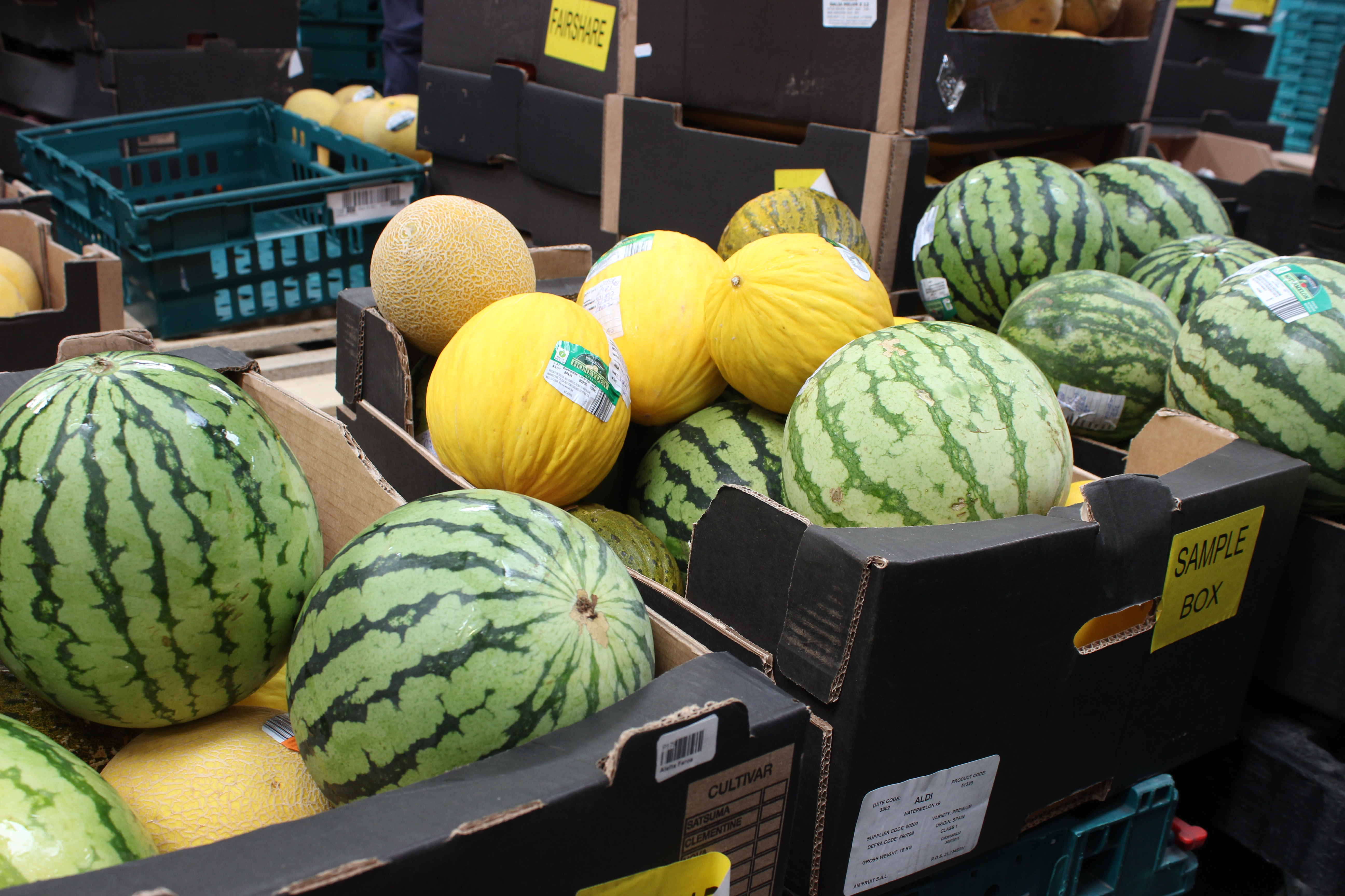 Surplus melons from Mack at a FareShare Regional Centre